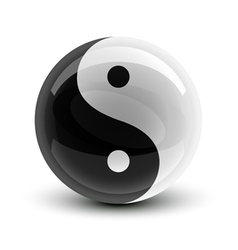 yin and yang symbol on a glossy ball vector image