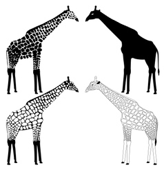 Giraffe silhouettes collection vector image vector image