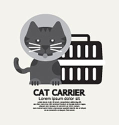 Cat Wearing Cone Collar With Carrier vector image vector image