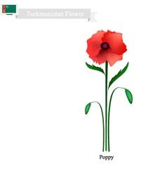 Red Poppy The Popular Flower of Turkmenistan vector image vector image