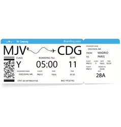 airline travel boarding pass tickets vector image