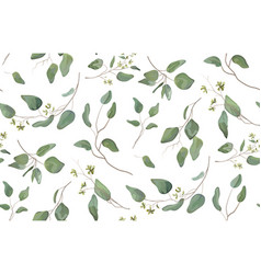 Eucalyptus different tree foliage natural vector