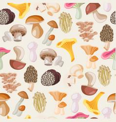 mushrooms edible vegeterian organic mushrooming vector image
