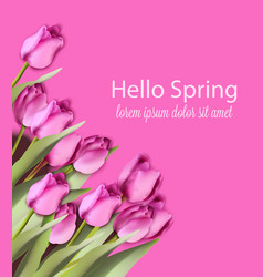pink tulips card watercolor helo spring vector image