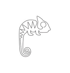 single continuous line drawing exotic vector image