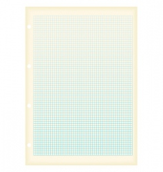 graph paper squares vector image