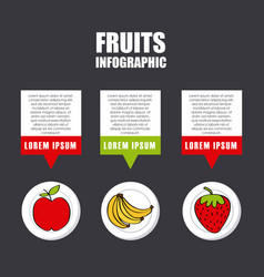 infographic presentation of fruit vector image vector image