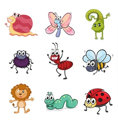 Colorful creatures vector image