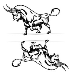 Bull cartoon in engraving style vector
