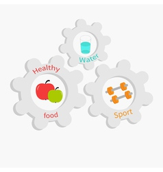 Cogwheel gear set with water apple dumbell vector image
