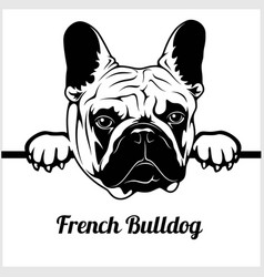 french bulldog - peeking dogs - - breed face head vector image