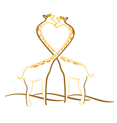 giraffe couple lovers vector image