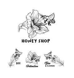 honey shop logo vector image