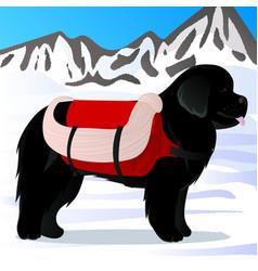 Newfoundland dog lifesaver in mountains vector