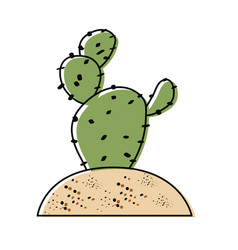 Paddle cactus icon vector