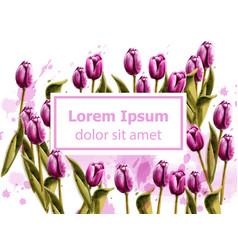 pink tulips spring card watercolor beautiful vector image