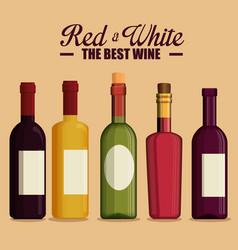 red wine bottles label vector image