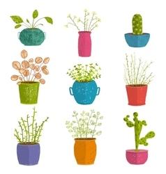 set green indoor plants in pots vector image