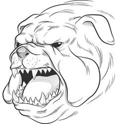 Sketch angry bulldog head barking doodle dra vector