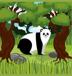Wild bear panda in the jungle scene vector
