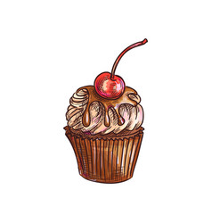 Cake topped cherry fruit isolated muffin sketch vector