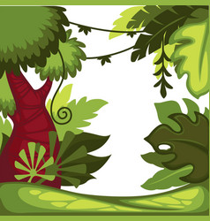 Jungle or rainforest lianas and bushes trees vector
