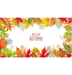seasonal banner of autumnal leaves vector image vector image