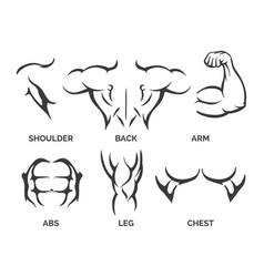 bodybuilder body parts icons vector image vector image