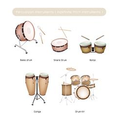 Set of Drum Instruments with Drumsticks vector image vector image