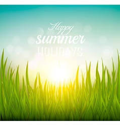 Beautiful summer background with grass and sun vector