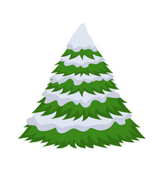 christmas tree in the snow on a white background vector image