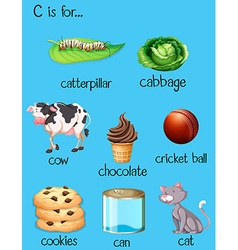 Different words for letter c vector