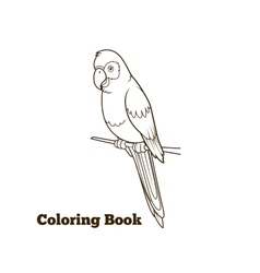 Parrot cartoon coloring book vector