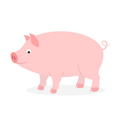pink pig with curly tail on white background vector image