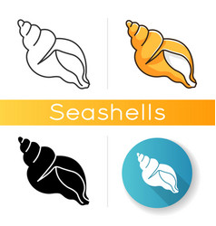 Tulip shell icon vector