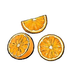 Set of hand drawn orange half slice and segment vector image