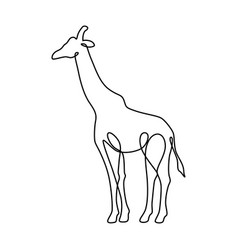 endless line art of giraffe vector image
