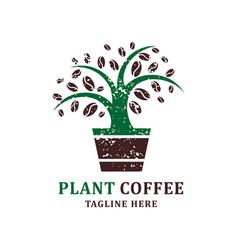 coffee plant logo design template vector image