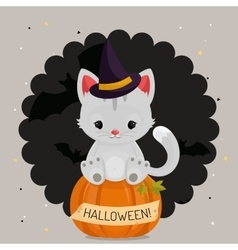 Halloween card or background with white cat vector image