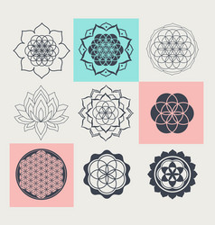 Sacred geometry floral symbols vector