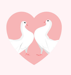 White doves in the heart vector
