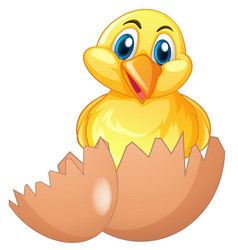 cute chick in cracked egg vector image vector image