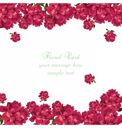 Rose flowers background Card vector image vector image