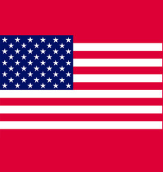 american flag official symbol of the state vector image vector image