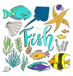 fish set hand drawn marine with colorful fishes vector image vector image