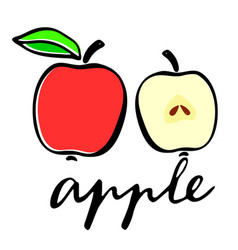 A red apple and an apple in cut flat vector