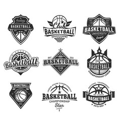 basketball team labels set sport league badges vector image