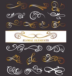 decorative template designs vector image