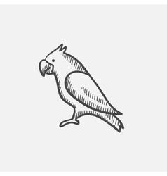 Parrot sketch icon vector