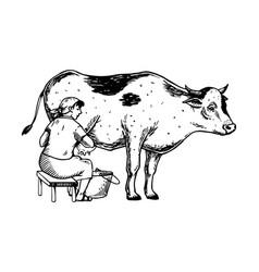 Woman milk cow engraving vector